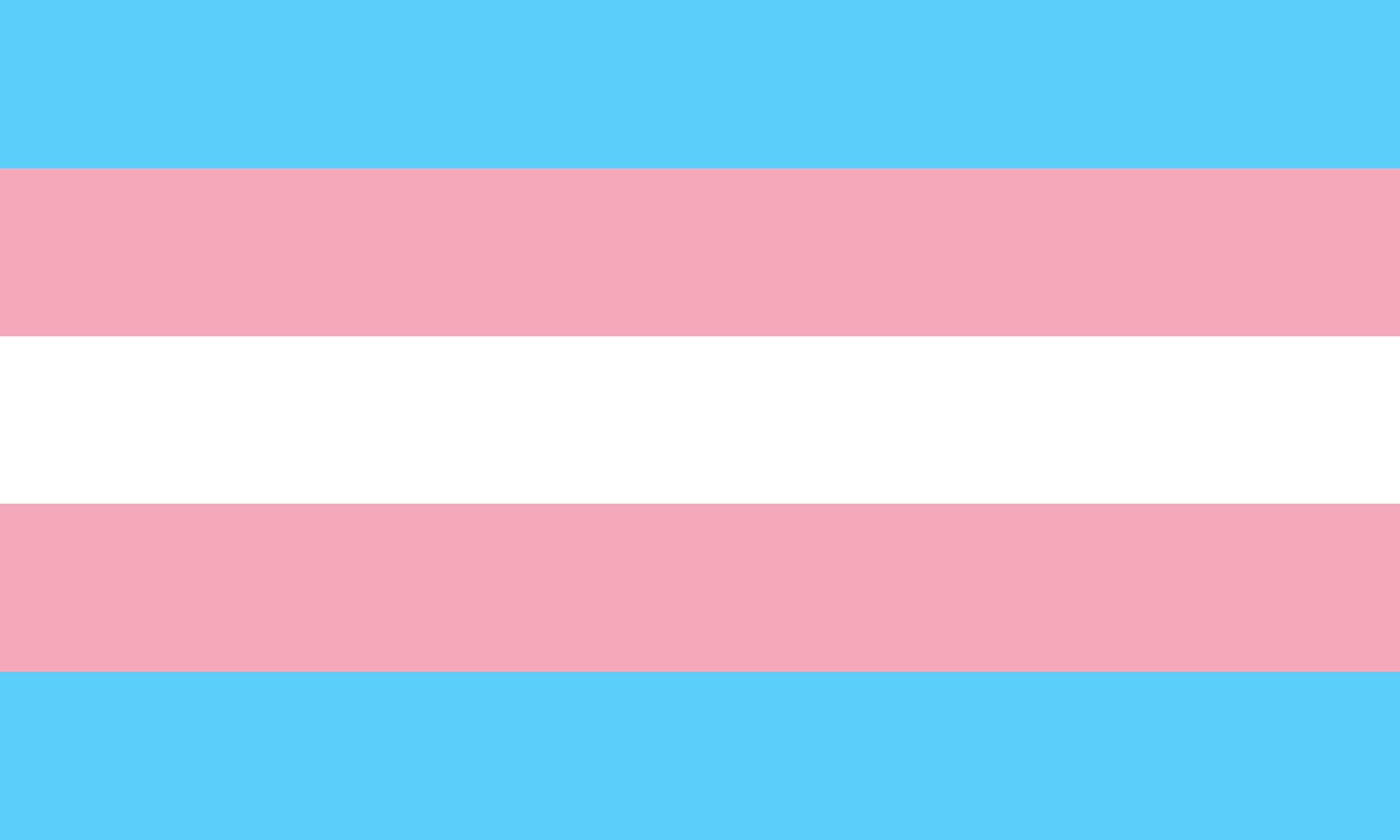 transgender pride flag by pride flags d8zu7zf