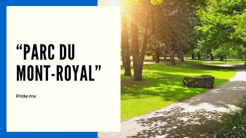 10 inolvidables experiencias para parejas en Montreal2